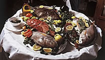 Dalmatia fish