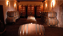 Wineries in Istrien