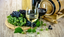 Wineries in Istria