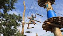 Team building adrenalin park